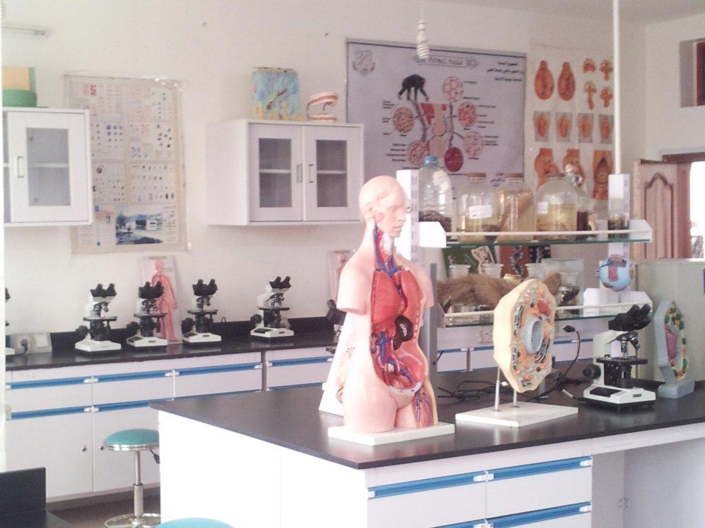 معمل التشريح - كلية العلوم الطبية