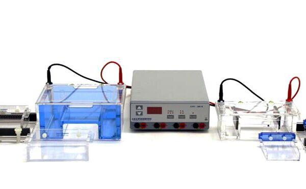 complete electrophorsis